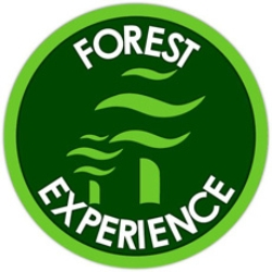 logo-forest-experience